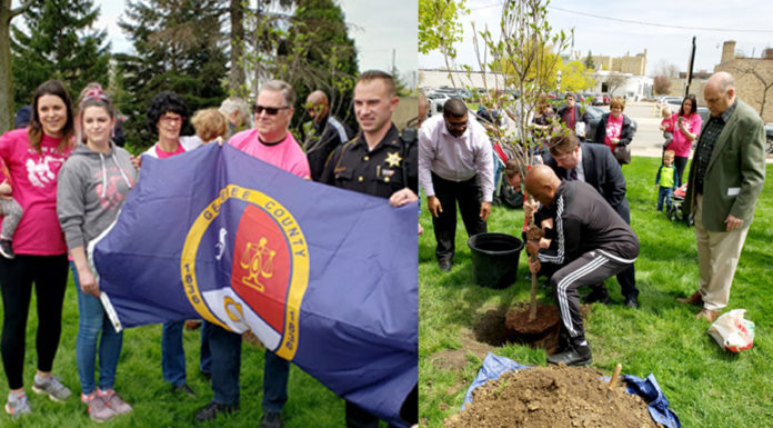 Arborial Metaphors - Flint's First Tree of Life Planted To Celebrate The Blessings of Organ Transplantation
