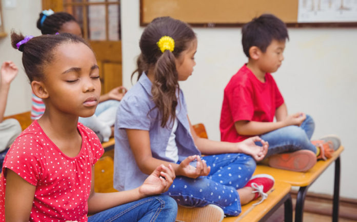 Teaming Up for Mindfulness